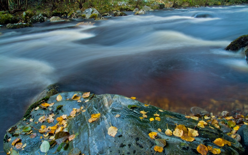 River Nethy, Cairngorms National Park