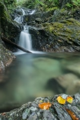 Seatoller waterfall, Borrowdale, Lake District