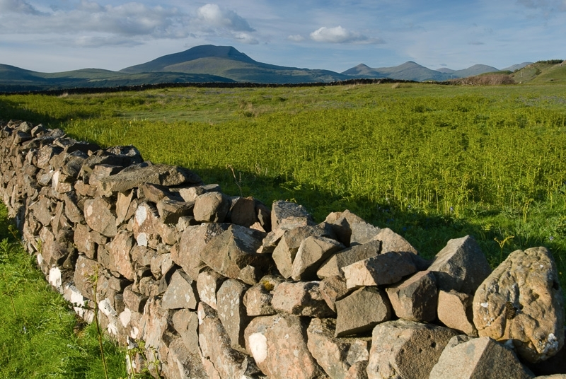 Pennyghael stone wall