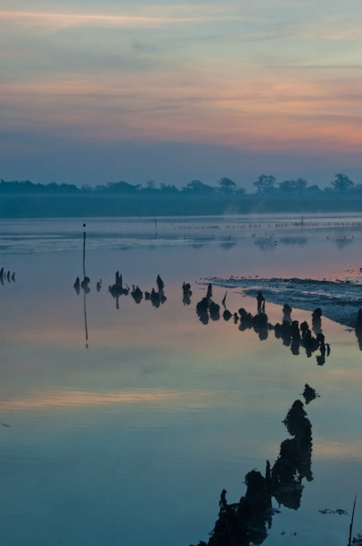 River Blyth at Dawn