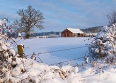 Winter Farm